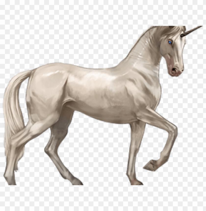 free PNG original - unicorn PNG image with transparent background PNG images transparent