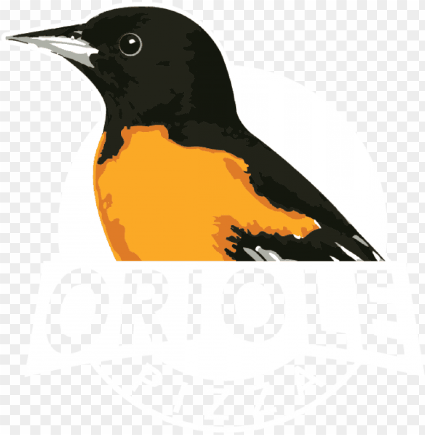 oriole pizza PNG image with transparent background@toppng.com