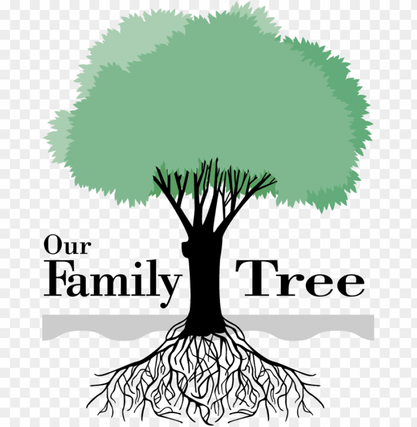 Our Family Tree Png Image With Transparent Background Toppng