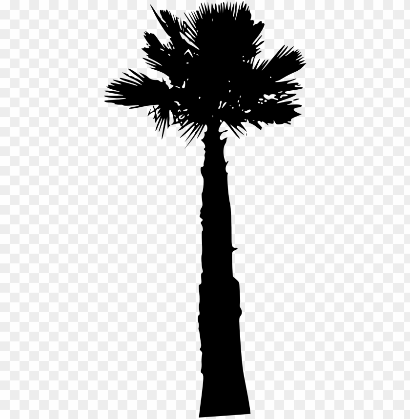 free PNG palm tree png - Free PNG Images PNG images transparent