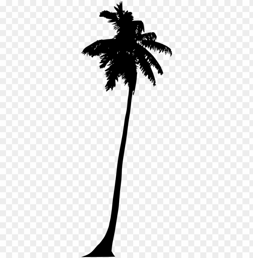 free PNG Palm Tree Silhouette png - Free PNG Images PNG images transparent