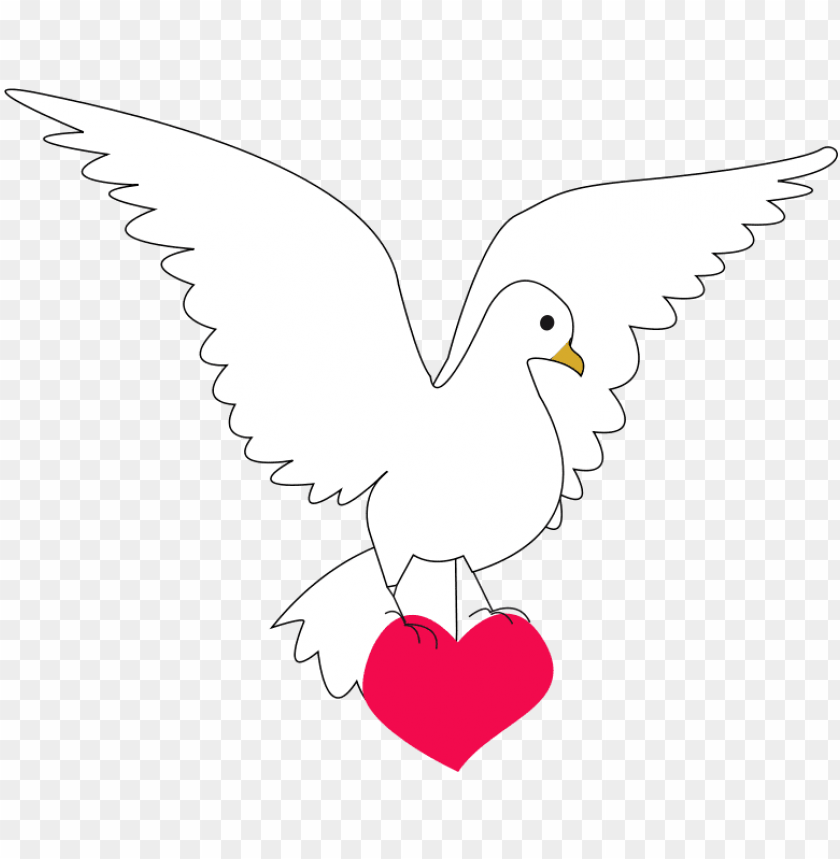free PNG paloma de la paz y amor PNG image with transparent background PNG images transparent