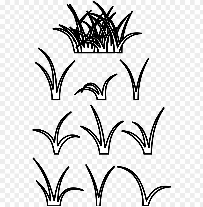 free PNG patch of grass drawing PNG image with transparent background PNG images transparent