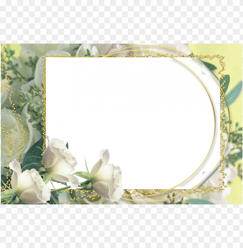 free PNG photo frame with roses background best stock photos PNG images transparent