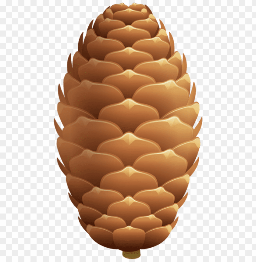 free PNG Download pinecone clipart png photo   PNG images transparent