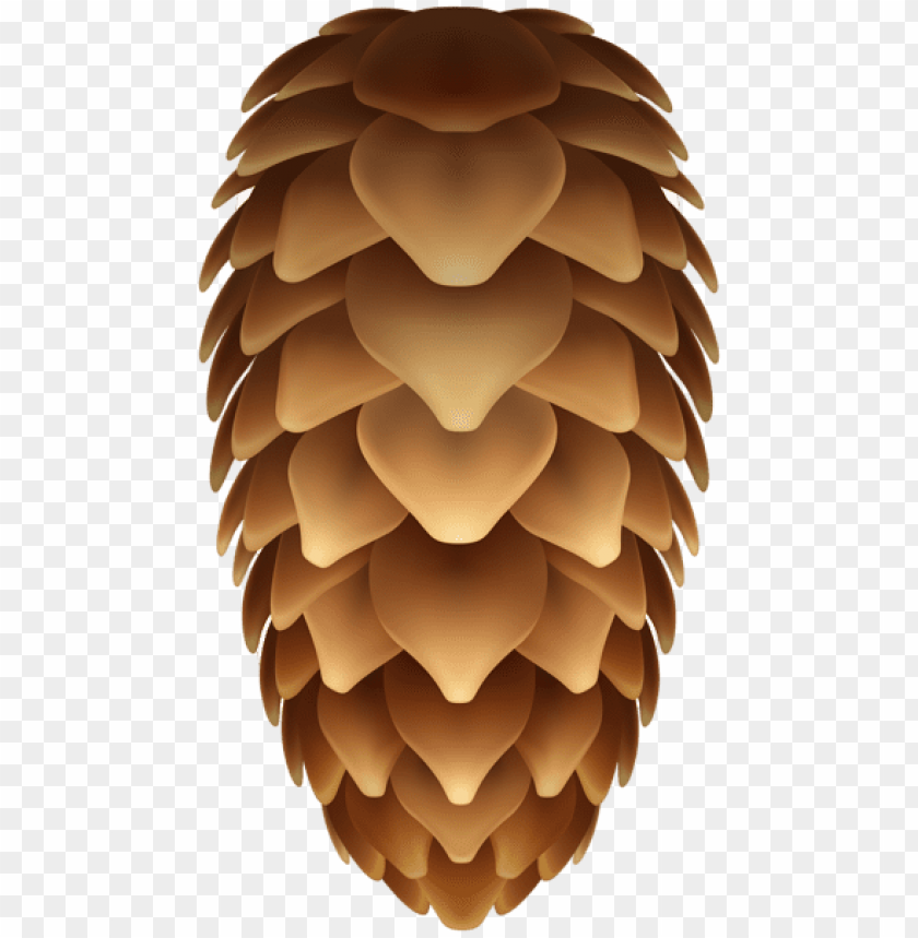 free PNG Download pinecone transparent clipart png photo   PNG images transparent