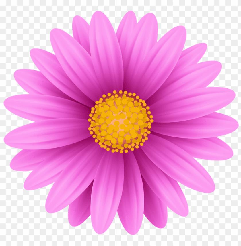 free PNG Download pink flower png png images background PNG images transparent