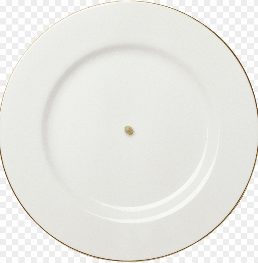 free PNG Download plate png images background PNG images transparent