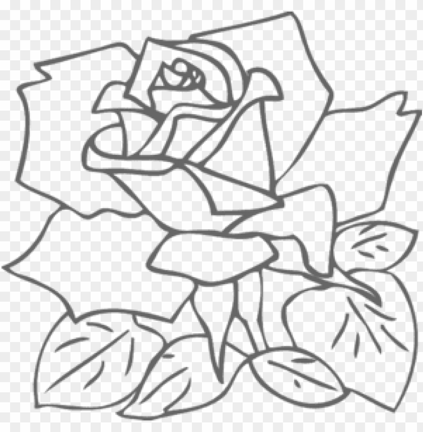 free PNG Download png rose outline s clipart png photo   PNG images transparent
