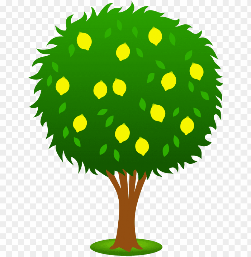 pohon buah png image with transparent background toppng pohon buah png image with transparent