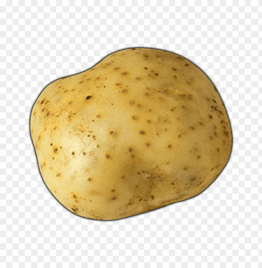 Download potato  image png images background@toppng.com