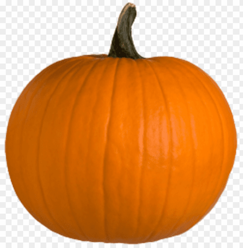 free PNG pumpkin PNG image with transparent background PNG images transparent