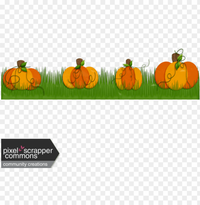 free PNG pumpkin patch boarder PNG image with transparent background PNG images transparent