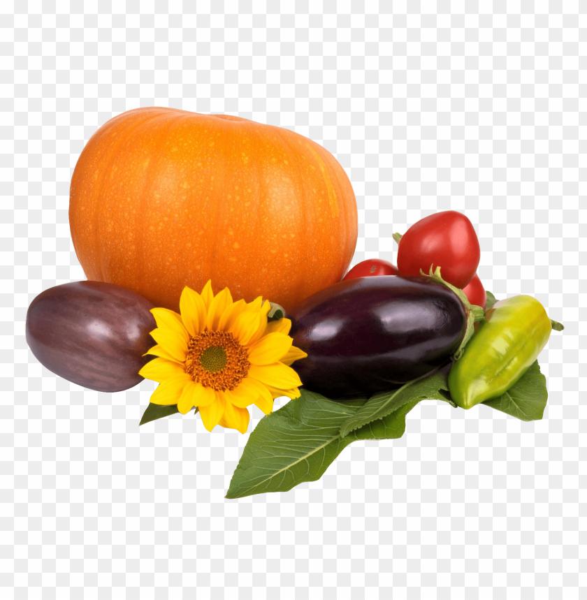 free PNG Download pumpkin tomato pepper eggplant png images background PNG images transparent