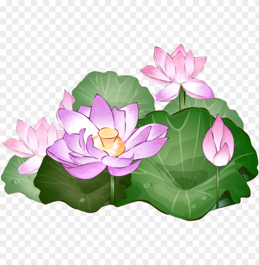 free PNG rab this free summer flower clip art - lotus flower clipart PNG image with transparent background PNG images transparent