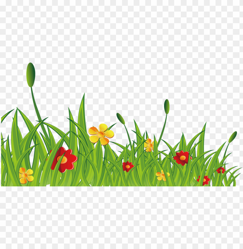 Rama Flores Silvestres Png Desenho De Arbustos Png Image
