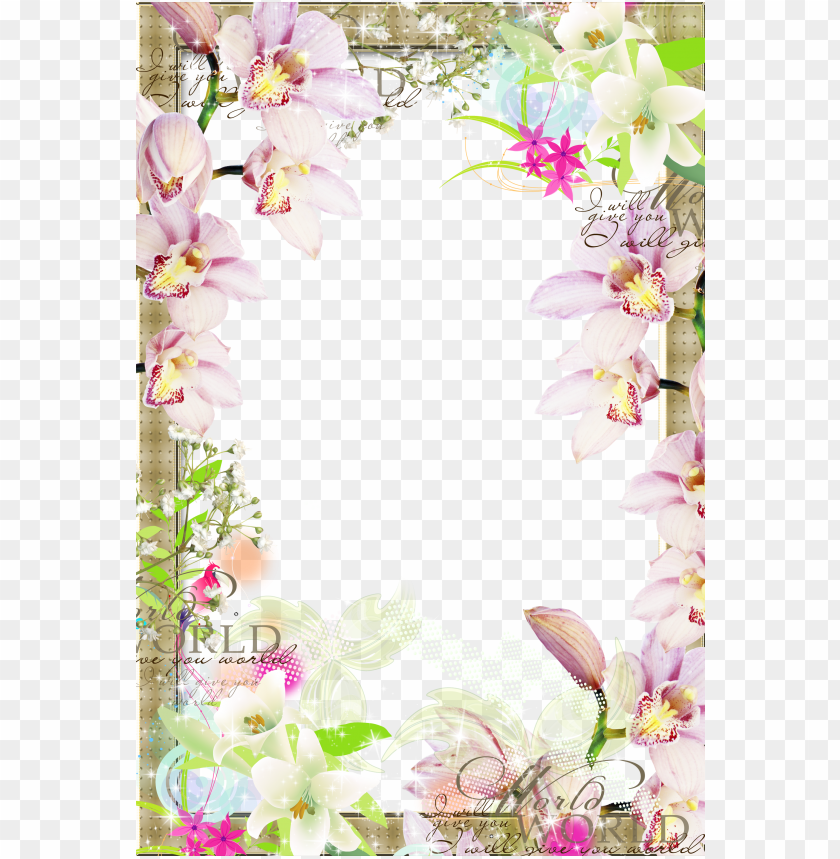 free PNG raphic black and white download picture frame clip - transparent spring floral border PNG image with transparent background PNG images transparent