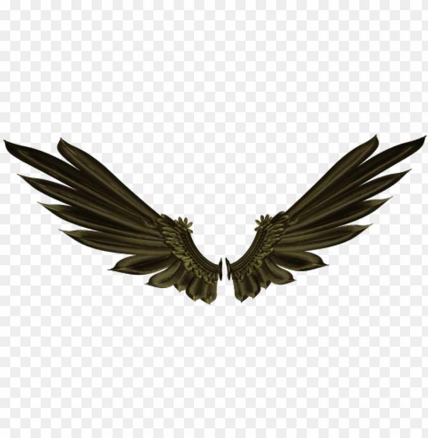 Raven Wings Png Image With Transparent Background Toppng