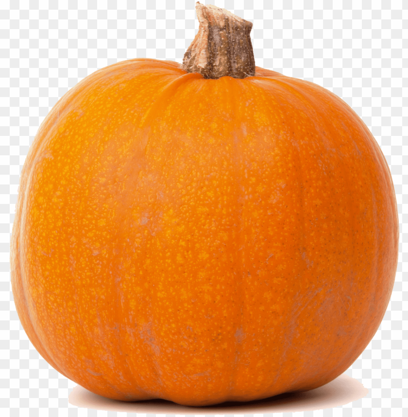 free PNG real pumpkin transparent png - pumpkin clipart transparent background PNG image with transparent background PNG images transparent