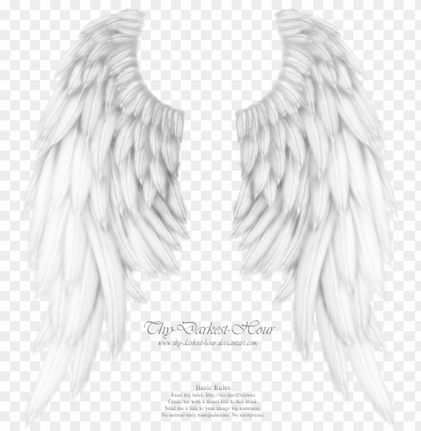 free PNG realistic angel wings - my boyfriend is my guardian angel he watches over my PNG image with transparent background PNG images transparent