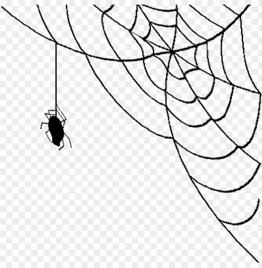 free PNG realistic spider web png jpg stock - spider web transparent background PNG image with transparent background PNG images transparent
