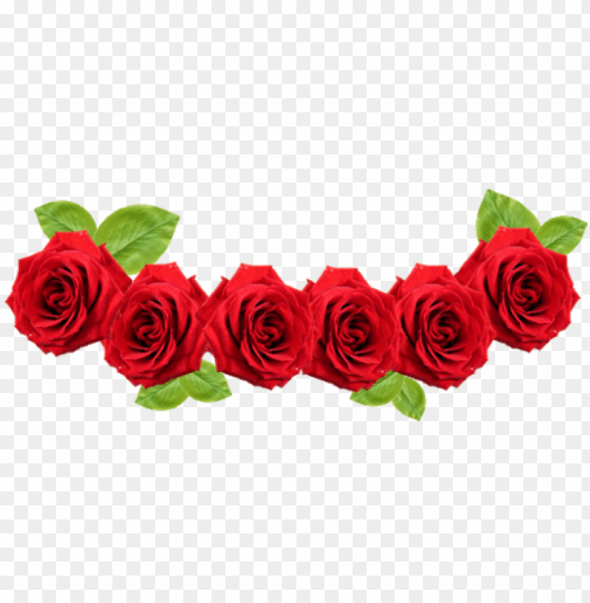 Red Rose Flower Red Flower Crown Transparent Png Image With