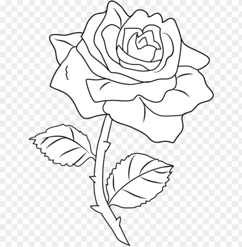 Flowers coloring pages, sheets - Topcoloringpages.net | 859x840