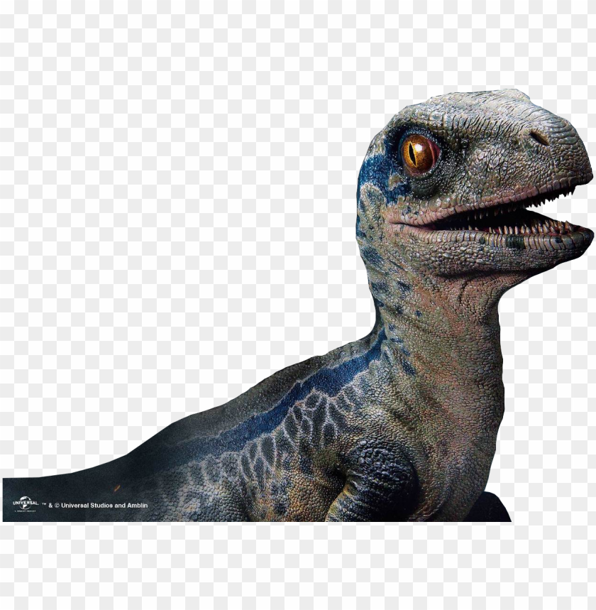 free PNG rime1 studio jurassic world the fallen kingdom baby - baby blue jurassic world fallen kingdom PNG image with transparent background PNG images transparent