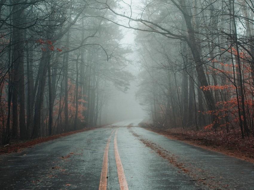 free PNG road, fog, forest, autumn, marking, asphalt background PNG images transparent