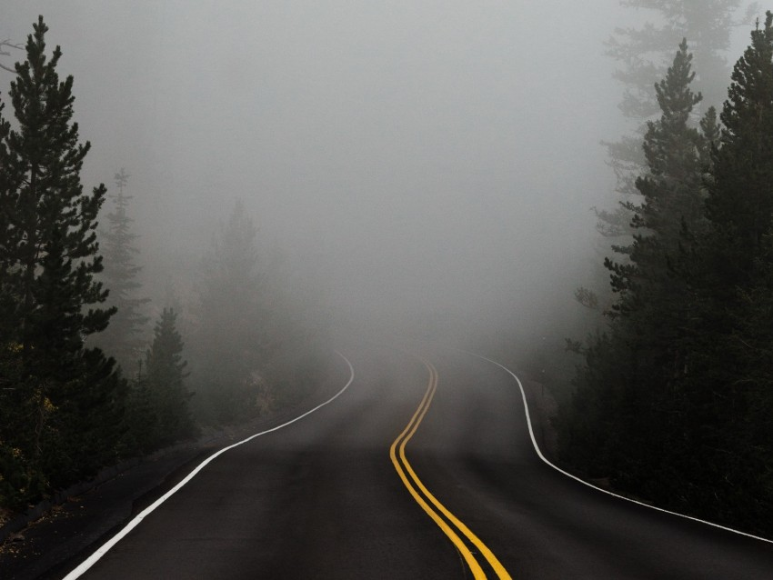 free PNG road, fog, marking, asphalt, turn, trees background PNG images transparent