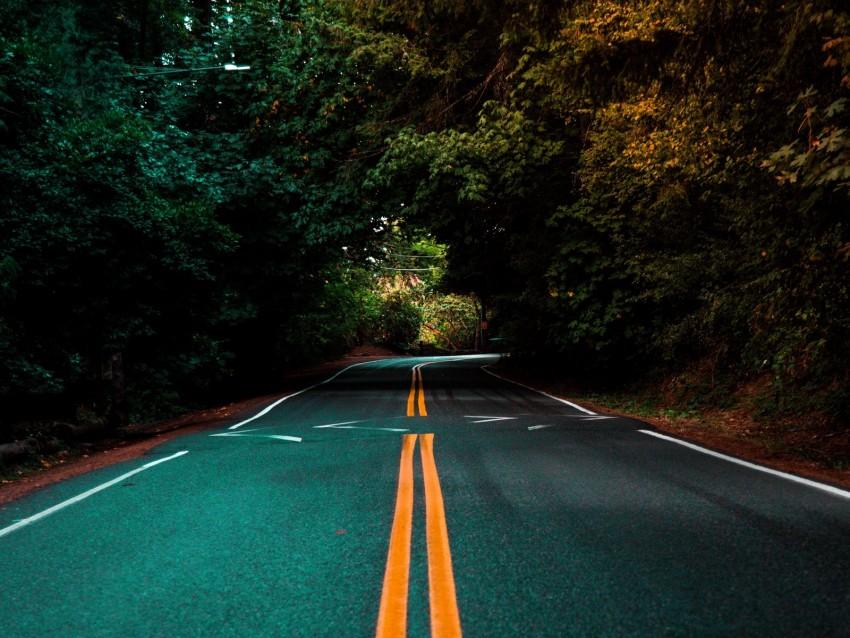 free PNG road, marking, turn, trees, asphalt background PNG images transparent