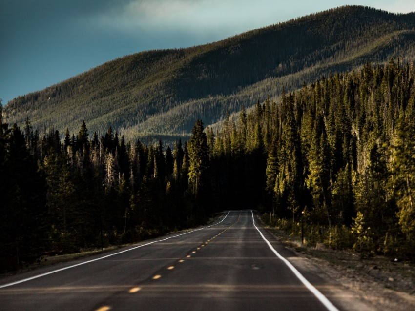 free PNG road, mountain, forest, direction, marking, sky background PNG images transparent