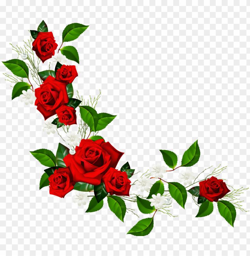 free PNG rose border PNG image with transparent background PNG images transparent