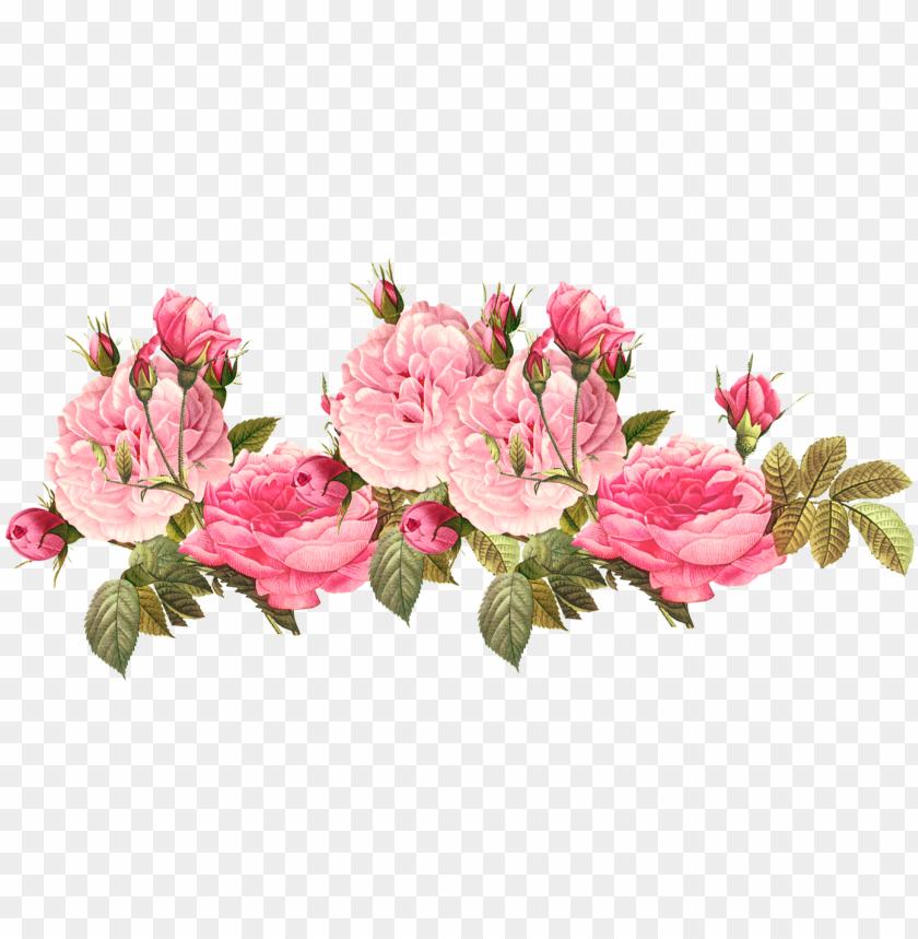 free PNG rose clipart png tumblr - pink roses vintage PNG image with transparent background PNG images transparent