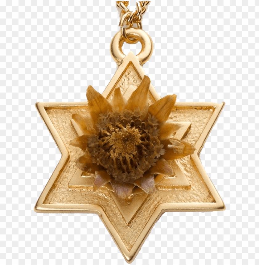 free PNG rose of bethlehem gold PNG image with transparent background PNG images transparent
