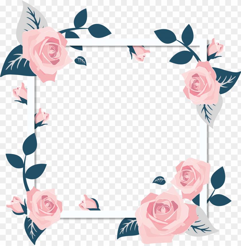 free PNG rose png images a flower that speaks only - transparent flower wedding border PNG image with transparent background PNG images transparent