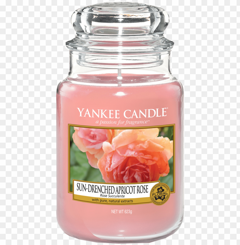 free PNG rose succulente bougie grande jar yankee candle - yankee candle crackling wood fire classic large jar PNG image with transparent background PNG images transparent