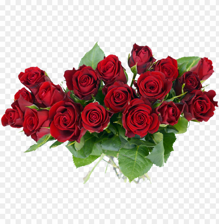 Rose Transparent Pictures Free Rose Flower Bouquet Png Image With Transparent Background Toppng
