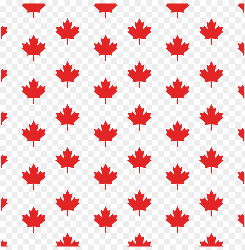 free PNG royalty free black and white maple leaf leaf canadian - free maple leaf patter PNG image with transparent background PNG images transparent