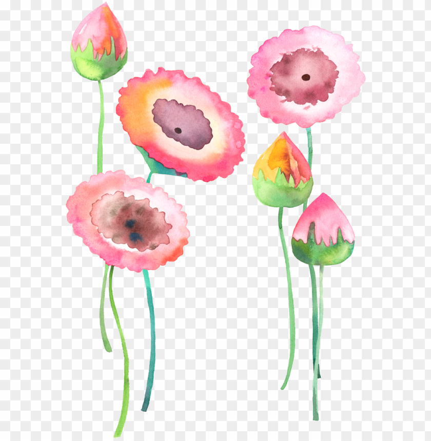 free PNG royalty free library watercolour flowers watercolor - watercolor flower watercolour PNG image with transparent background PNG images transparent
