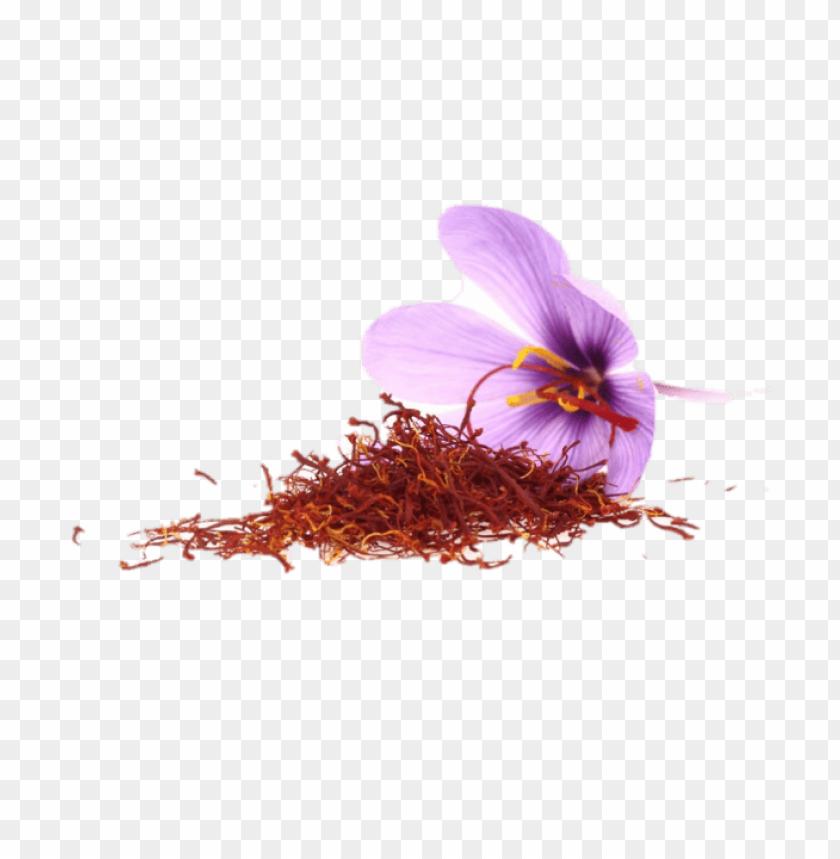free PNG Saffron PNG, Download Saffron PNG, زعفران PNG, صور Saffron PNG image with transparent background PNG images transparent