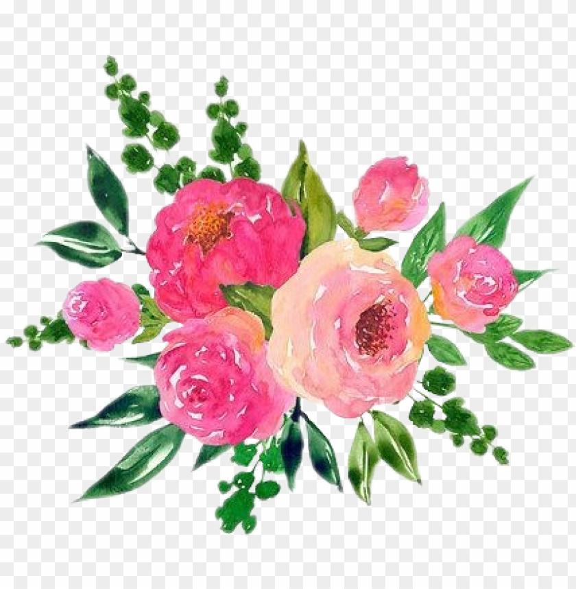 free PNG scrose roses rose aesthetic cute flower watercolor - cute flower aesthetic transparent PNG image with transparent background PNG images transparent