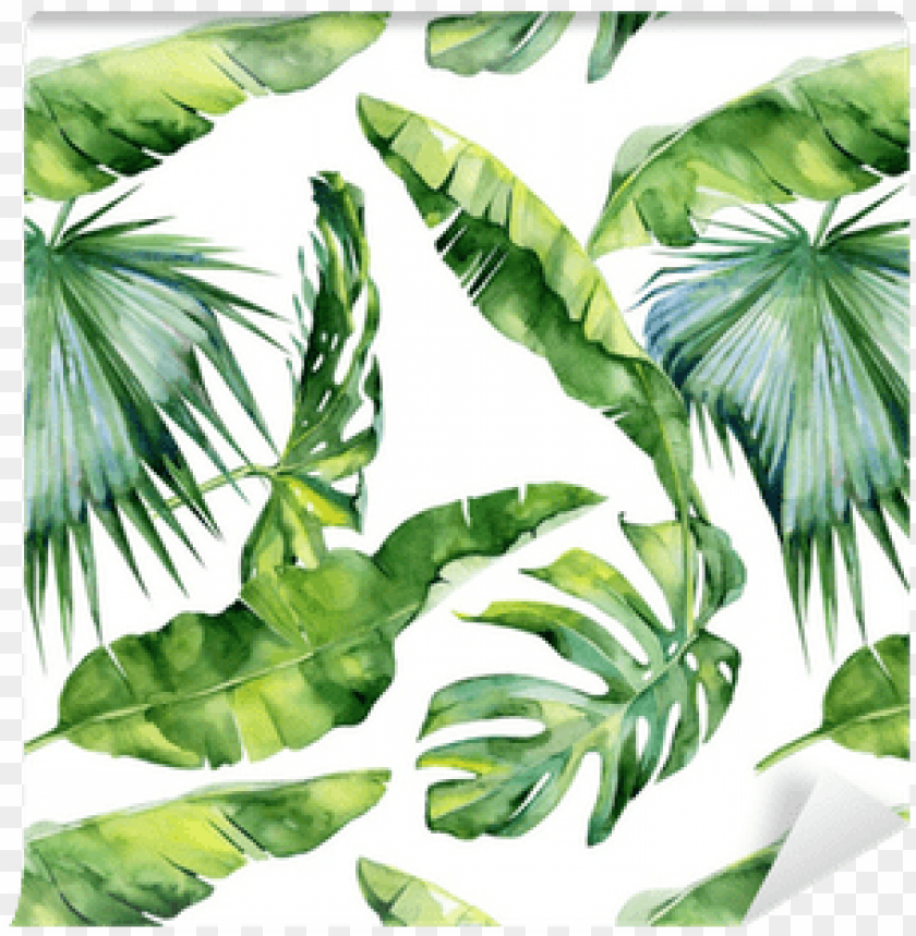Seamless Watercolor Illustration Of Tropical Leaves Graphite Pickleball Paddle Leaf Png Image With Transparent Background Toppng Affordable and search from millions of royalty free images, photos and vectors. seamless watercolor illustration of