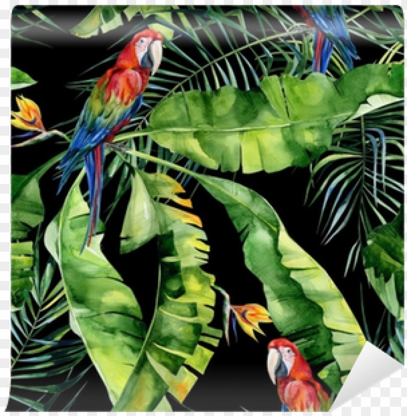 free PNG seamless watercolor illustration of tropical leaves, - obrazy na płótnie tropical papugi PNG image with transparent background PNG images transparent