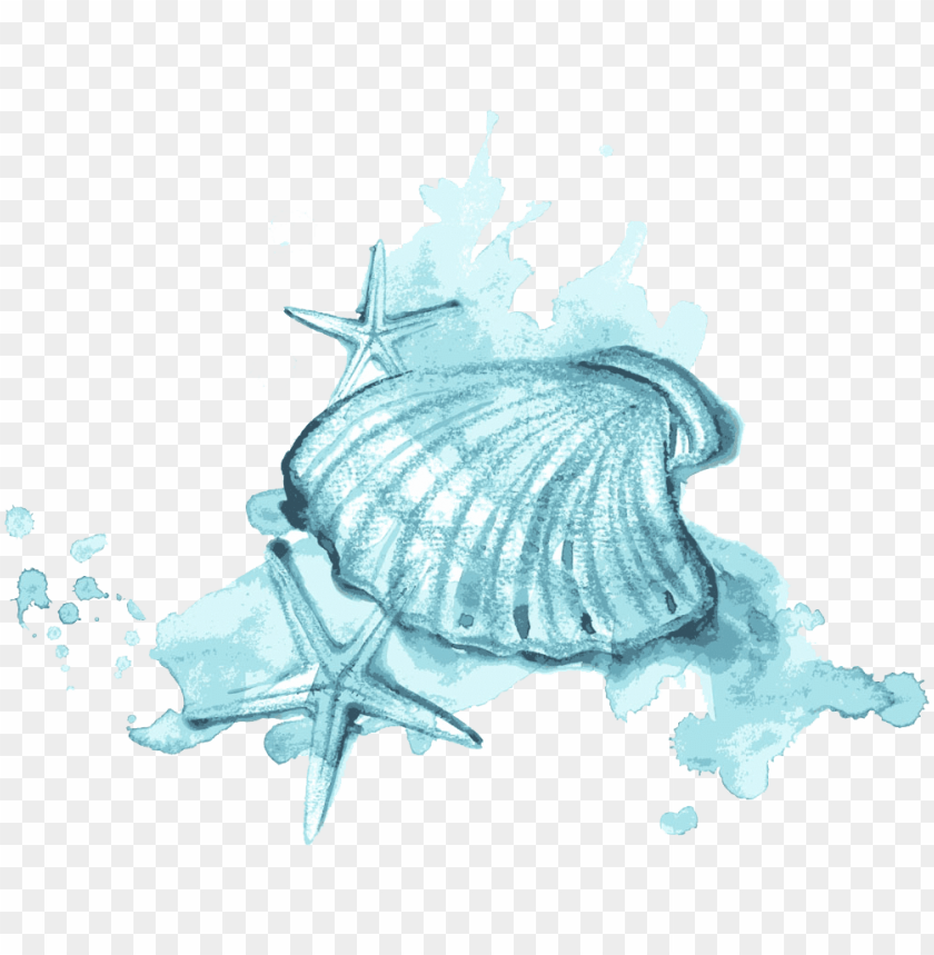 free PNG seashell watercolor painting illustration - watercolor painti PNG image with transparent background PNG images transparent