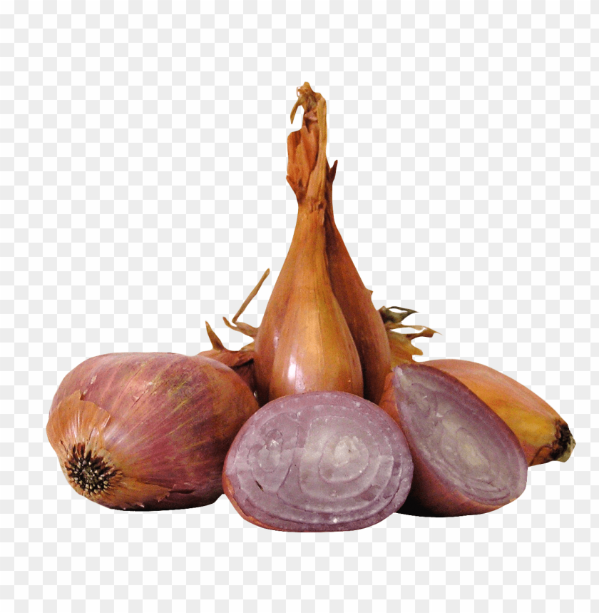 free PNG Download shallot onions png images background PNG images transparent