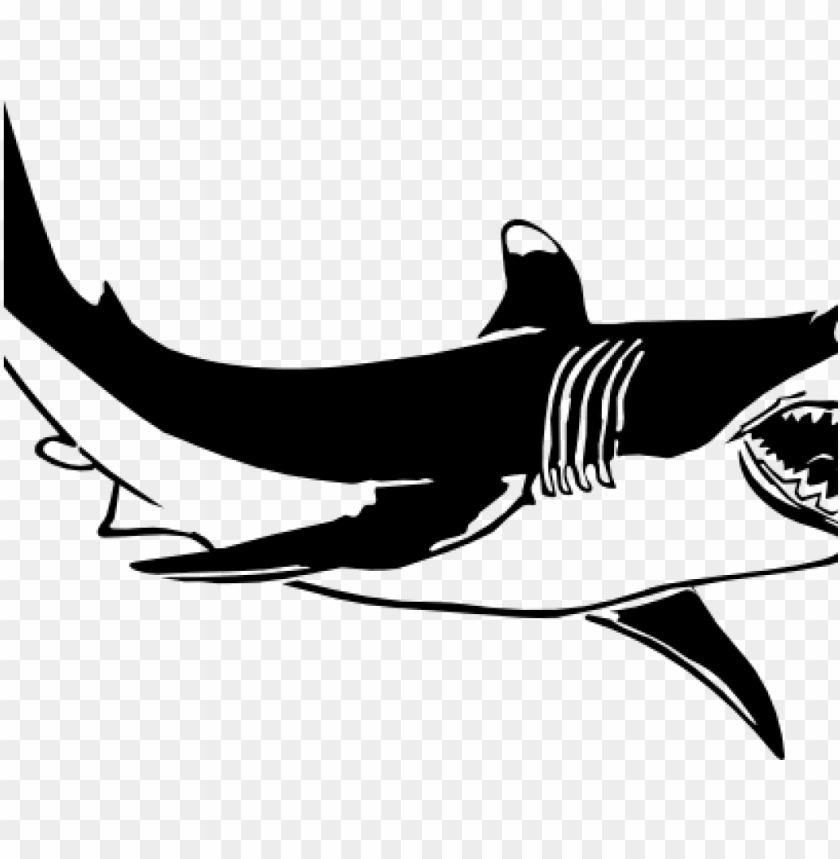 free PNG shark clipart black and white shark clipart black and - shark and the goldfish quotes PNG image with transparent background PNG images transparent