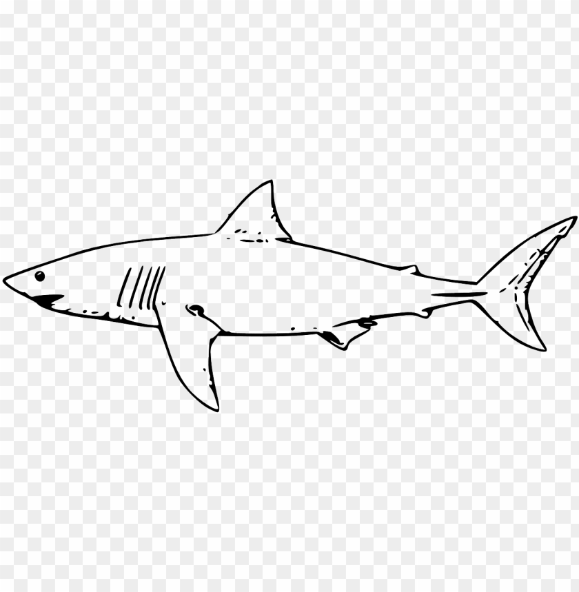 Shark Coloring Pages - ColoringBay | 859x840