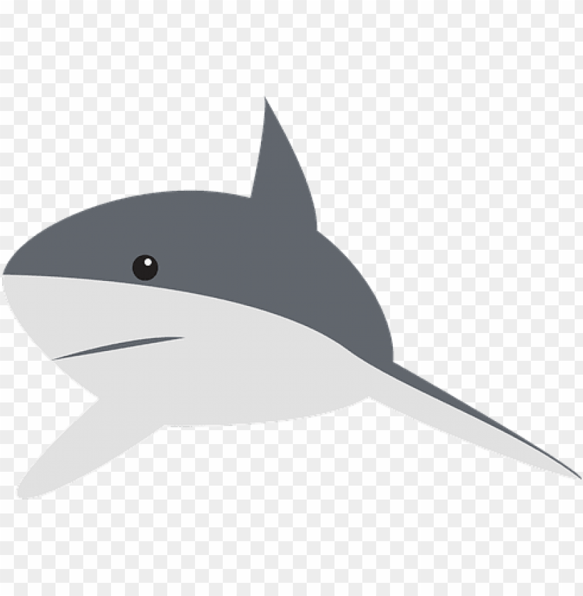 free PNG shark perspective swimming fin animal gray - gray shark cartoo PNG image with transparent background PNG images transparent