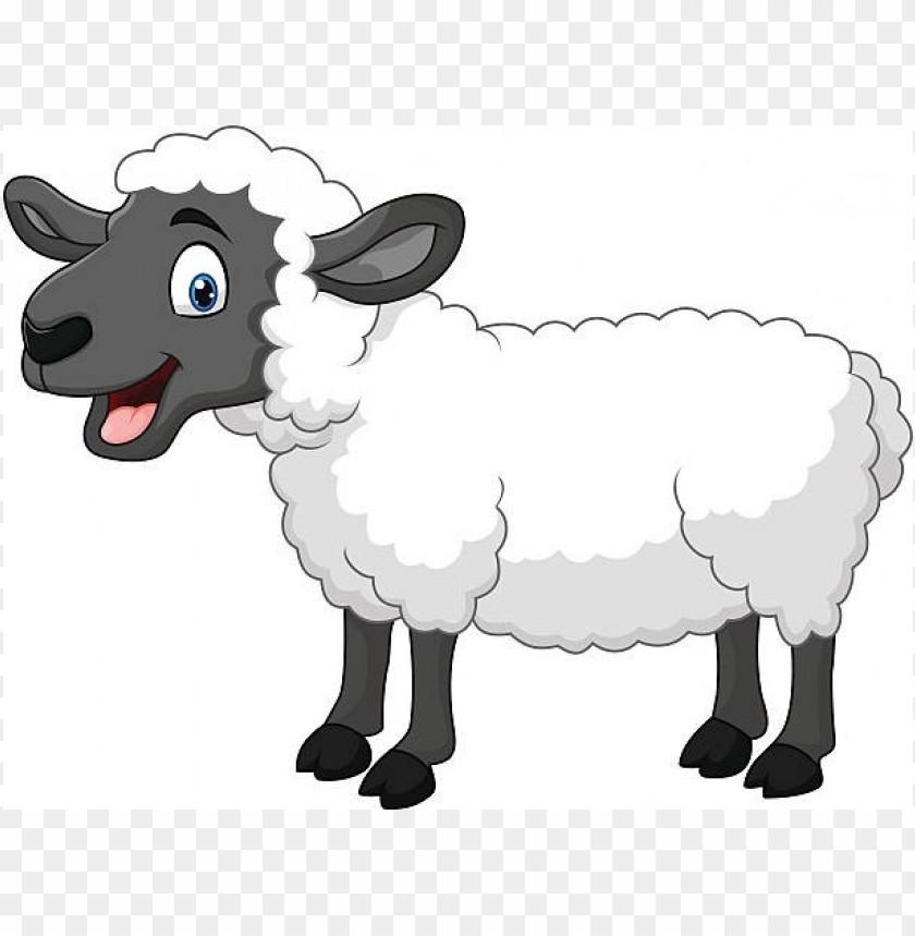 sheep clipart